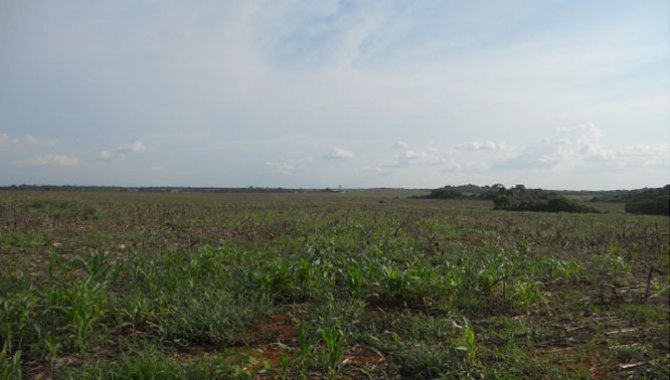 Foto - Imóvel Rural 2.960 ha - Itaúba - MT - [8]