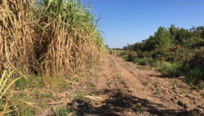 Foto - Rural - Fazenda Boa Sorte - Prata/MG - [6]