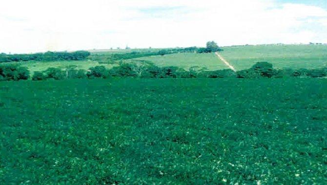 Foto - Imóvel Rural 5,5 alq. - São Pedro - Cajobi - SP - [2]
