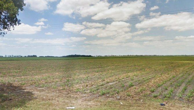 Foto - Fazenda Utinga 358 ha - Rio Largo - AL - [2]
