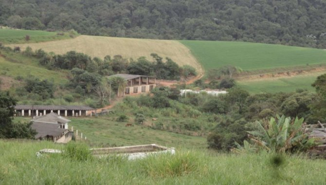 Foto - Imóvel Rural 81 ha - Fazenda Atibaia - Mato Dentro - Atibaia - SP - [4]