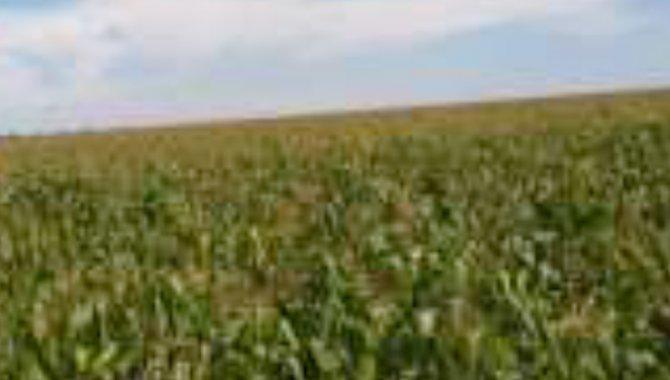 Foto - Área de Terras 950 ha - Fazenda Azul - Santa Carmen - MT - [9]