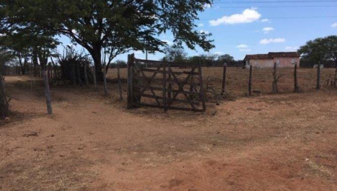 Foto - Fazenda - Sítio Luíza - Venturosa - PE - [5]