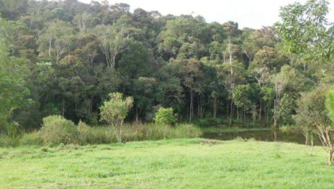 Foto - Imóvel Rural 348.451 m² - Cocuera - Mogi das Cruzes - SP - [1]