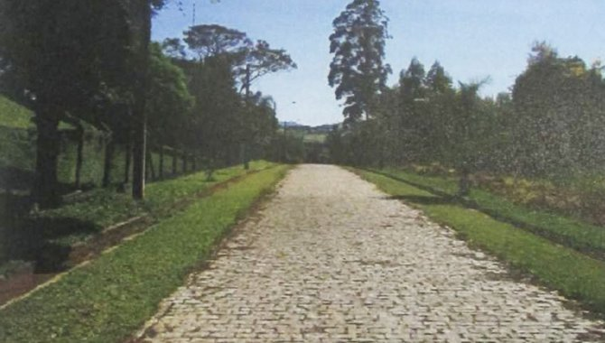 Foto - Terreno 5.287 m² - Rio Abaixo - Atibaia - SP - [4]
