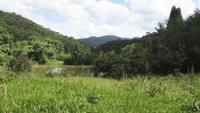 Foto - Área de Terras 40 ha - Sítio Colinas de São Pedro - Sapucaí Mirim - MG - [3]
