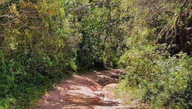 Foto - Terreno 1.180 m² - Colinas do Imbiry - Campos do Jordão - SP - [2]