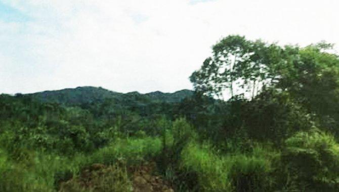 Foto - Áreas de Terras 242 ha - Cananéia - SP - [1]