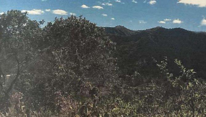Foto - Área de Terras 245 ha - Canjica - Planaltina - GO - [1]