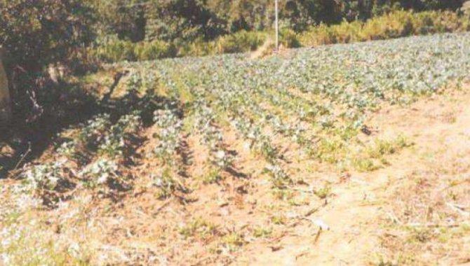 Foto - Direitos sobre Imóvel Rural 65 ha - Ribeirão Fundo - Munhoz - MG - [12]