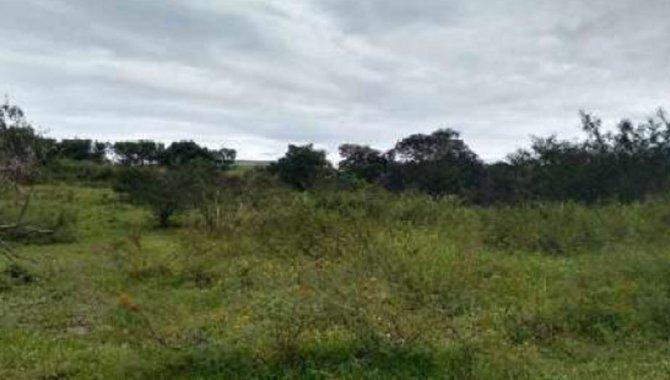 Foto - Parte Ideal sobre Fazenda Santa Vicentina 111 ha - Limeira - SP - [1]