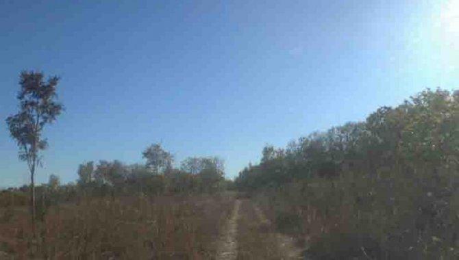 Foto - Áreas de Terras 14 ha (Chácara 14) - Fazenda Panambyh - Palmas - TO - [1]