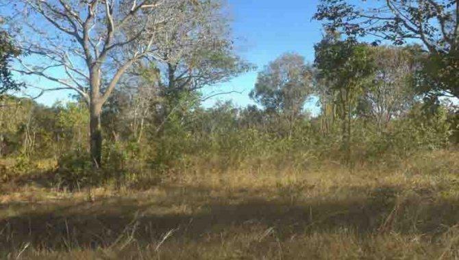 Foto - Áreas de Terras 14 ha (Chácara 14) - Fazenda Panambyh - Palmas - TO - [2]