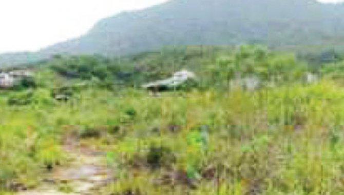 Foto - Área de Terras 90.000 m² - Arrozal - Ilhabela - SP - [6]