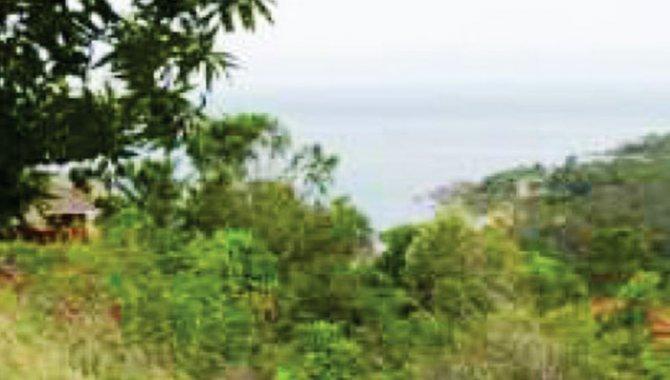 Foto - Área de Terras 90.000 m² - Arrozal - Ilhabela - SP - [2]