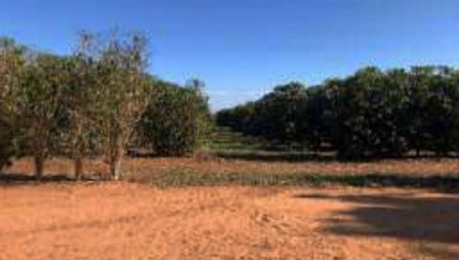 Foto - Imóvel Rural 320 ha - Fazenda Santa Lúcia - Várzea da Palma - MG - [4]