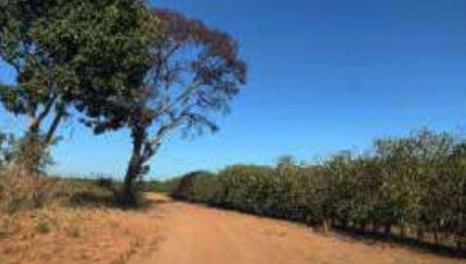 Foto - Imóvel Rural 320 ha - Fazenda Santa Lúcia - Várzea da Palma - MG - [6]