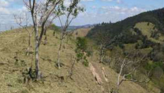 Foto - Áreas de Terras 14 ha - Fazenda Pereiras - Itatiba - SP - [2]