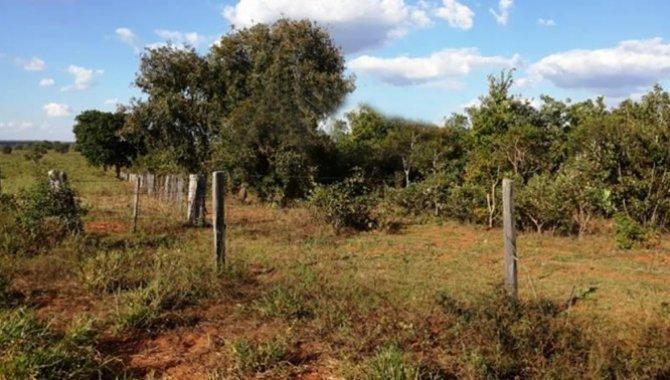Foto - Fazenda 952 ha - Terras Pastais - Camapuã - MS - [4]