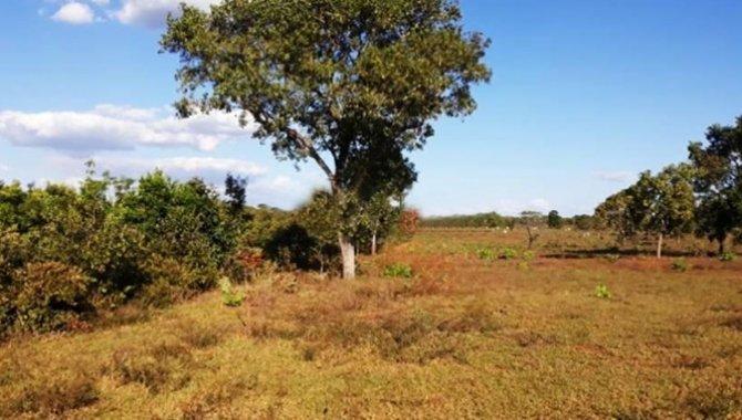 Foto - Fazenda 952 ha - Terras Pastais - Camapuã - MS - [3]