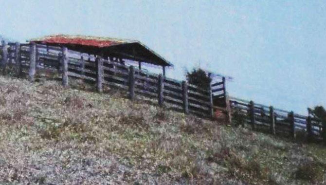 Foto - Imóvel Rural 36 ha - Coronel Macedo - SP - [1]