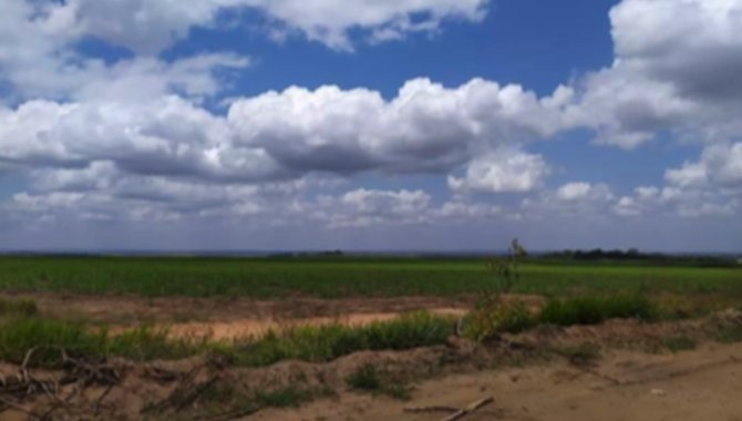 Foto - Fazenda 259 ha - Fazenda São José - Mamanguape - PB - [4]