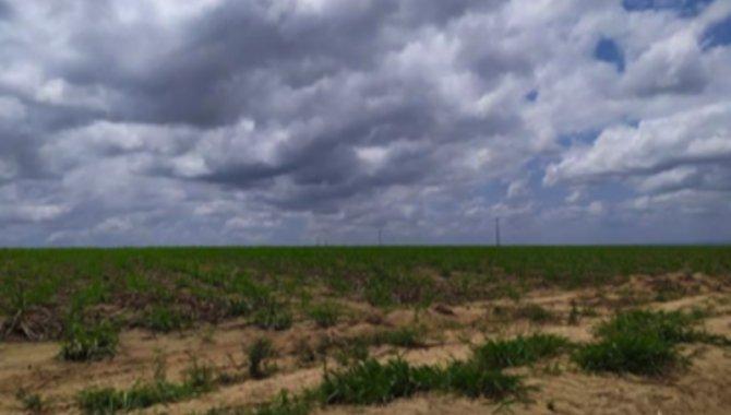 Foto - Fazenda 259 ha - Fazenda São José - Mamanguape - PB - [1]