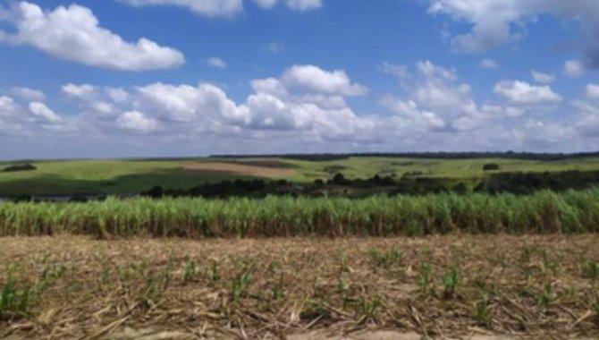 Foto - Fazenda 259 ha - Fazenda São José - Mamanguape - PB - [2]